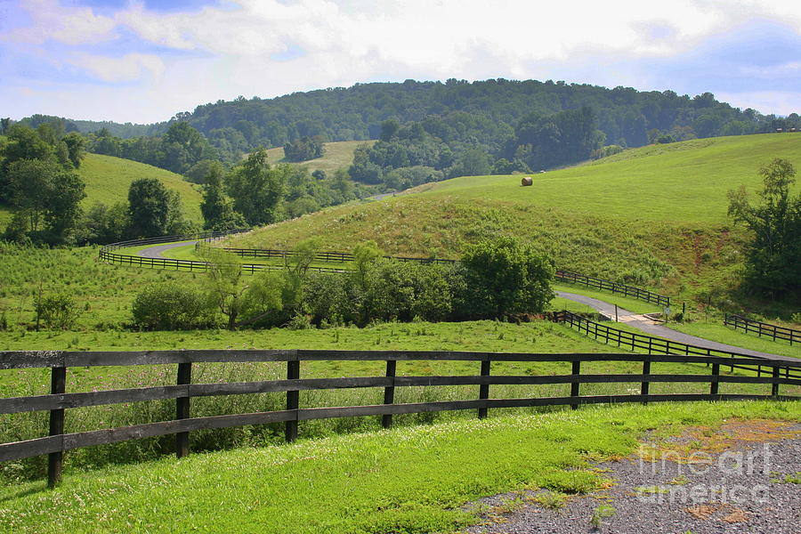 Country Photograph - Country Lane by Julie Lueders