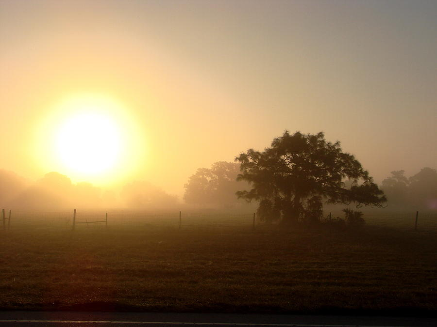 Sunrise Photograph - Country Morning Sunrise by Kimberly Camacho