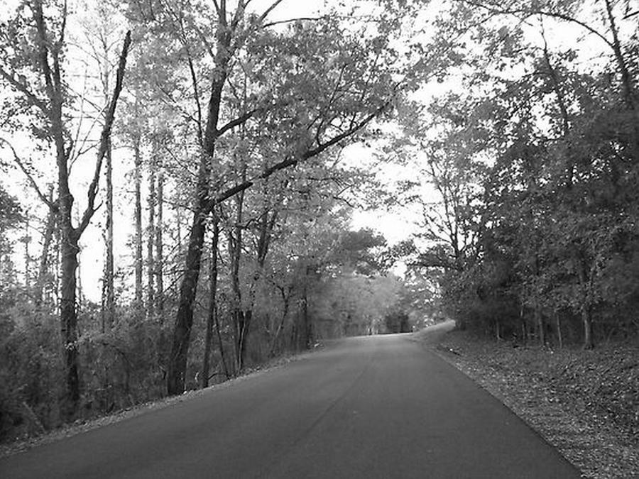Black & White Photograph - Country Road Black And White by Paula Ferguson