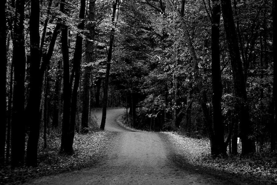 Country Photograph - Country Road II by Michelle  BarlondSmith