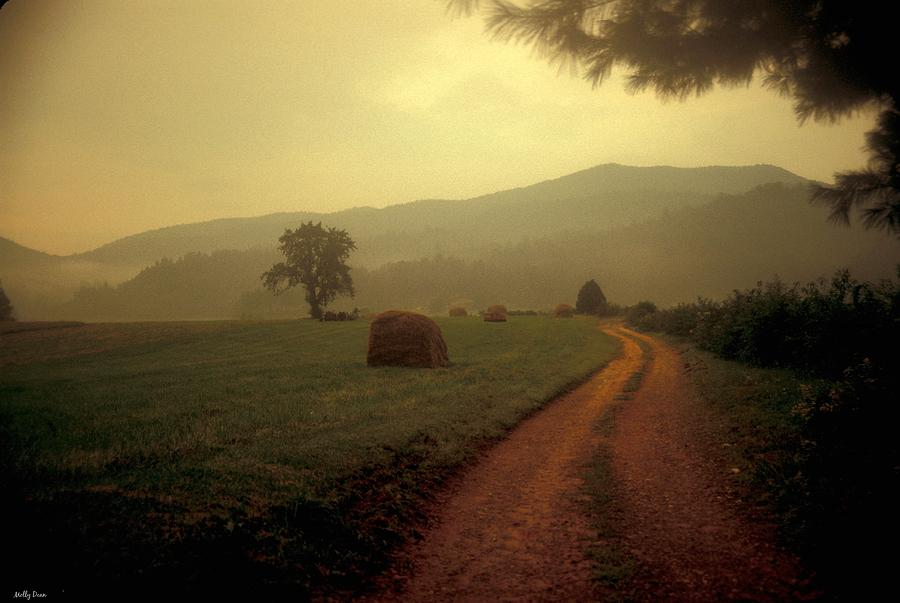 Country Road Photograph - Country Road In The Mountains by Molly Dean