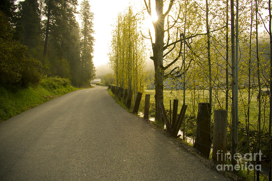 Road Photograph - Country Road by Idaho Scenic Images Linda Lantzy