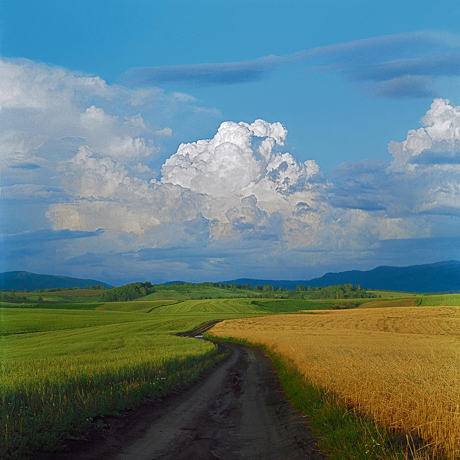 Country Road Photograph by Pavel  Filatov