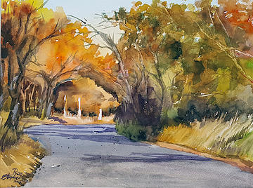 Country Road by Ron Stephens