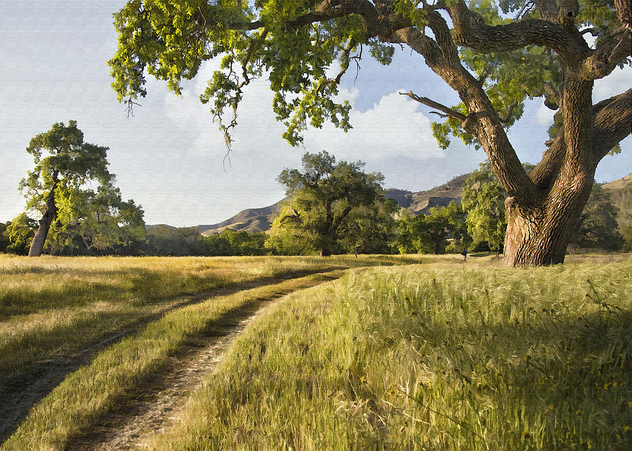 Landscape Digital Art - Country Road by Sharon Foster