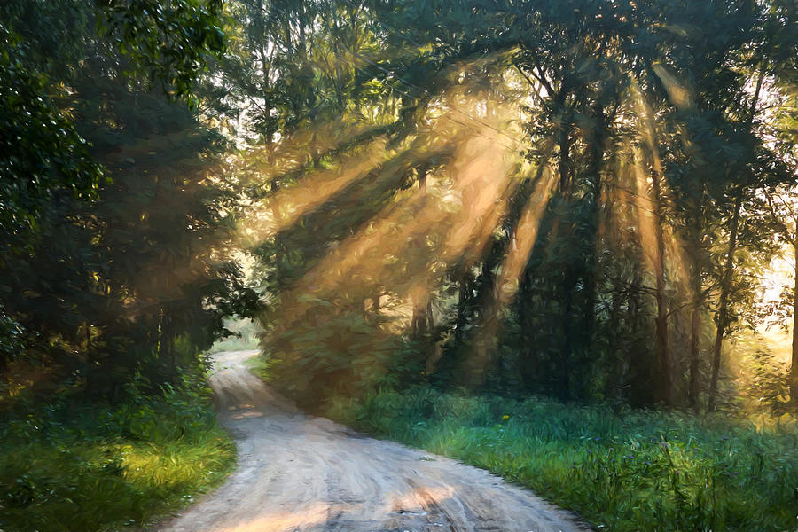 Country Road Sunlight Streaming Through Trees Painting By