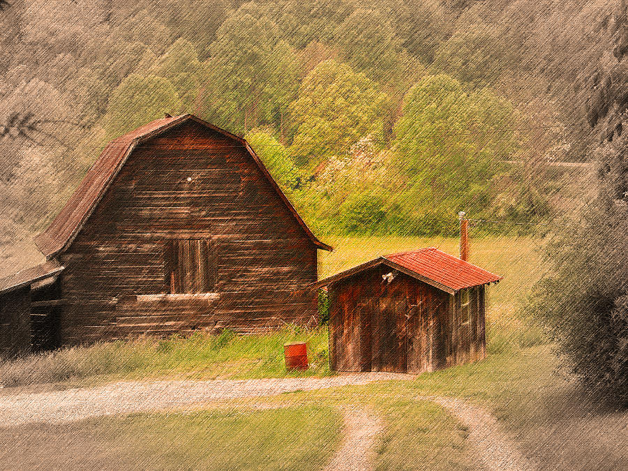 Country Photograph - Country Shack by Itai Minovitz
