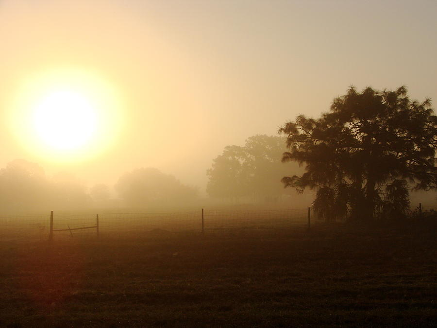 Sunrise Photograph - Country Sunrise by Kimberly Camacho