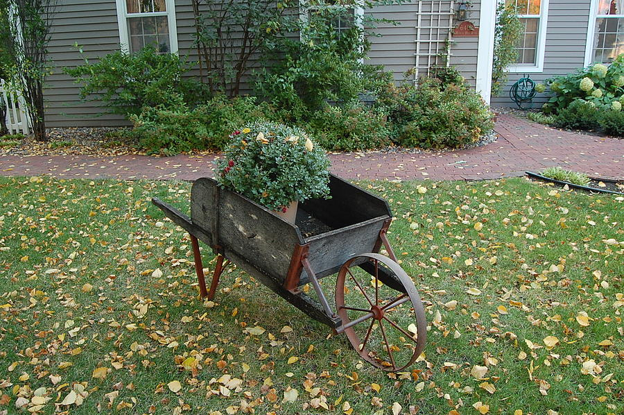 Countryside Photograph - Country Wheelbarrow  by Leslie Thabes