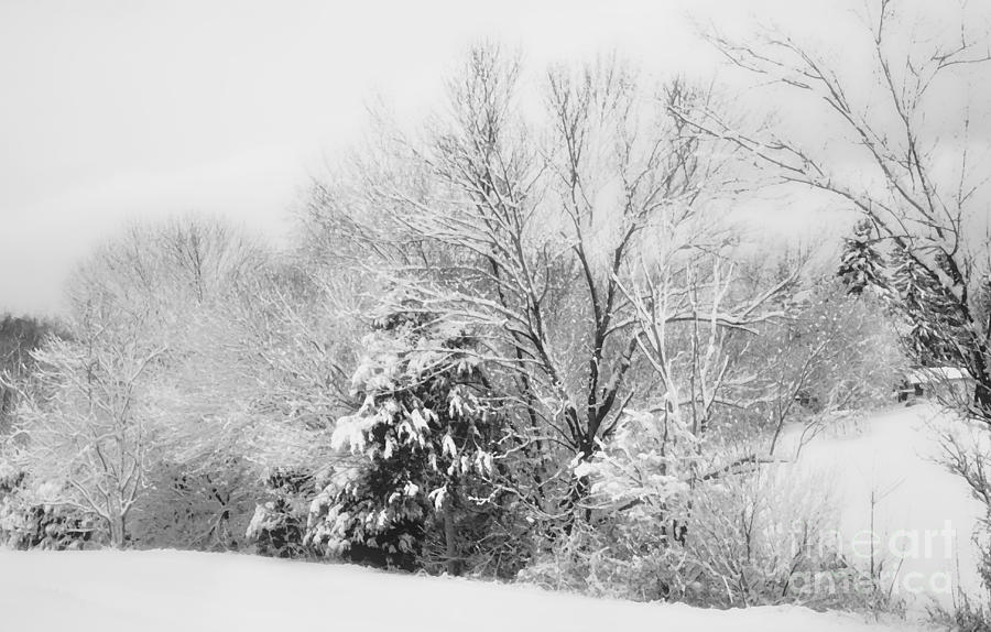 Snow Photograph - Country Winter by Kathy Jennings
