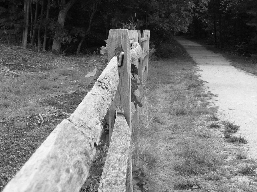 Nature Photograph - County Fence  by D R TeesT