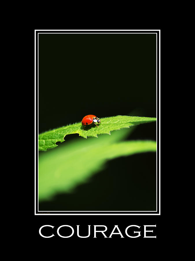 Courage Mixed Media - Courage Inspirational Motivational Poster Art by Christina Rollo