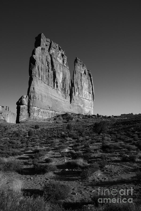 Landscape Photograph - Courthouse Tower by Timothy Johnson