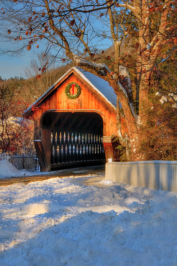 Covered Bridge in Winter by Joann Vitali