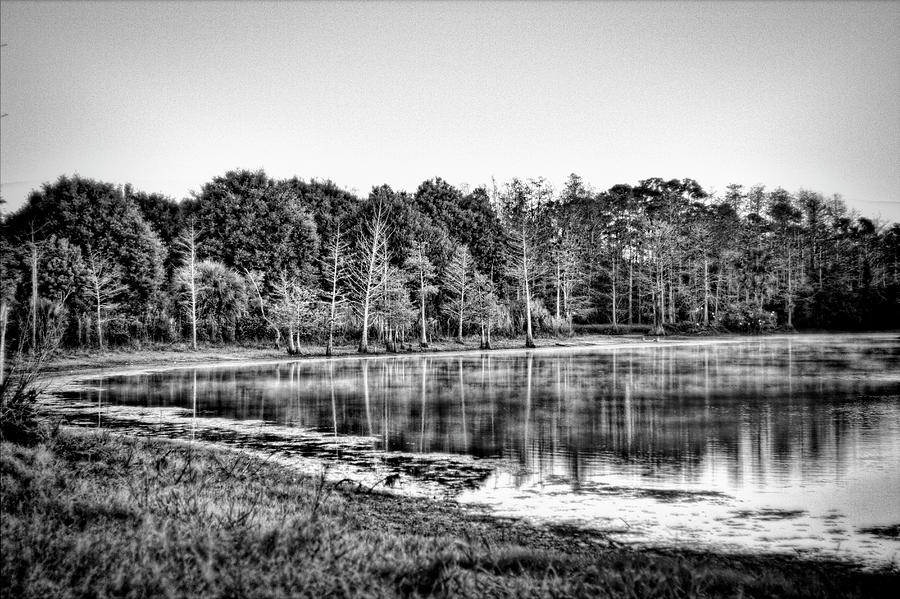 Black And White Photograph - Cow Pen Lake by Roberto Aloi