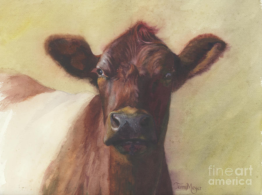 Cow Portrait IIi - Pregnant Pause Painting by Terri  Meyer