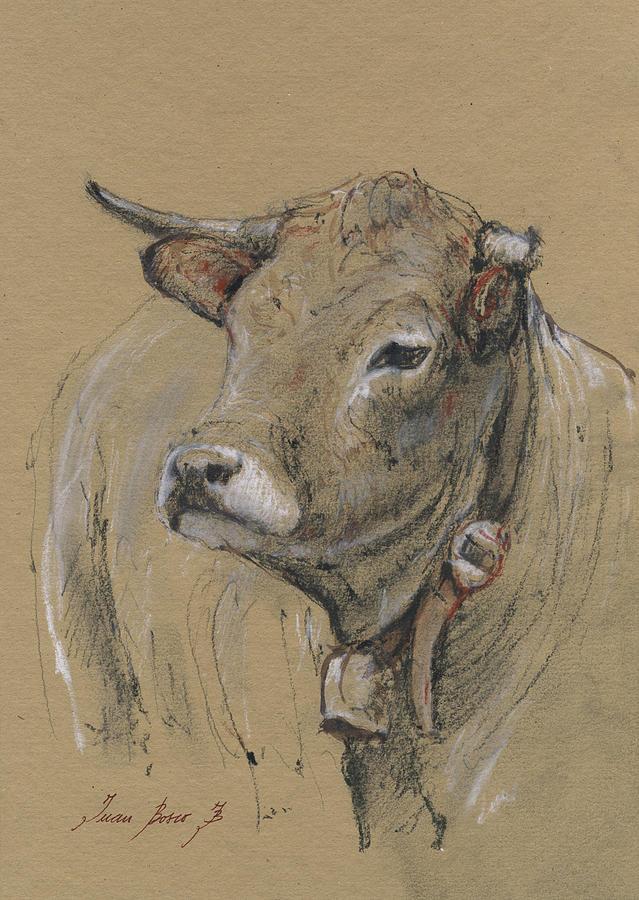 Cow Portrait Painting - Cow Portrait Painting by Juan Bosco