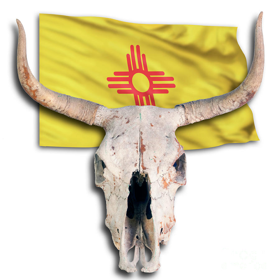 Cow Skull And New Mexico Flag. Photograph by W Scott McGill
