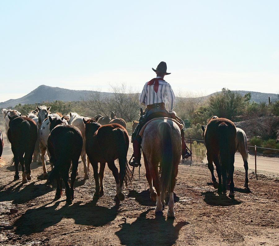 Cowboy and Horse Herd by Elizabeth Rose