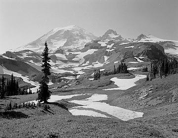 Mountain Landscape Photograph - Cowlitz Park by Paul Schaufler