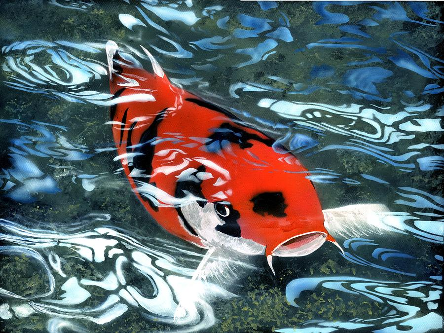Koi Painting - Coy Koi by Charles Parks