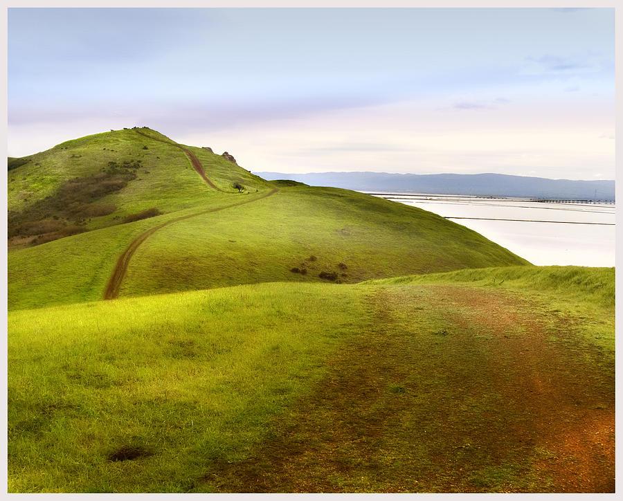 Landscape Photograph - Coyote Hills by Karen  W Meyer