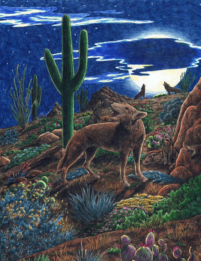 Coyote Drawing - Coyote Moon by Theresa Higby
