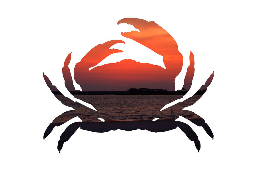 Crab Photograph - Crab Sunset by Michael Colgate