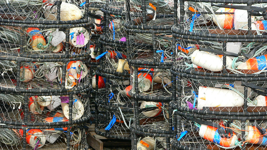 Crabs Photograph - Crab Traps by Larry Keahey