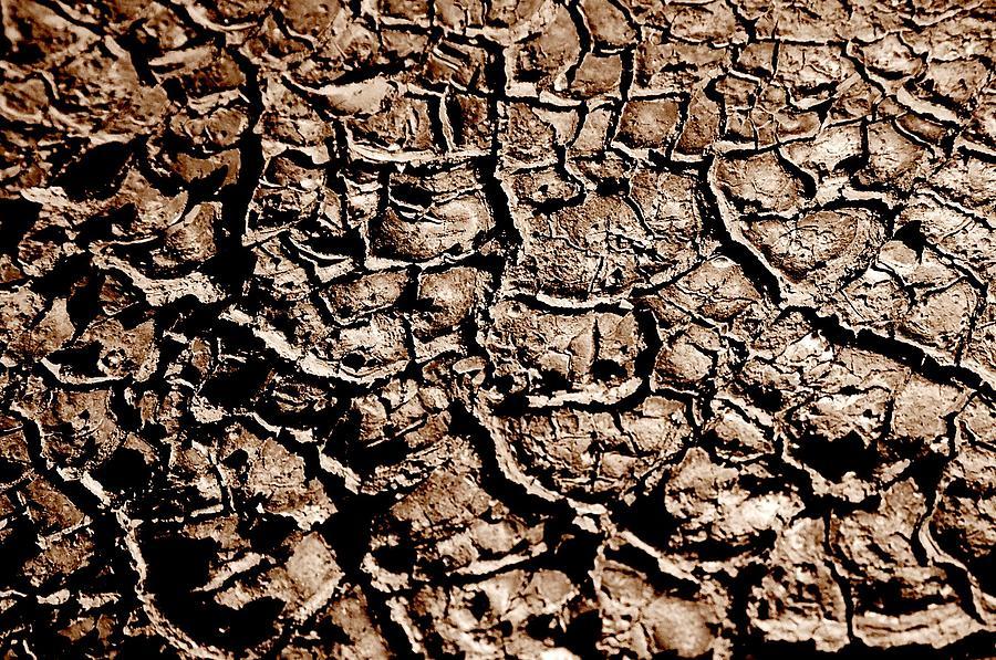 Landscape Photograph - Cracked Earth by Caroline Clark