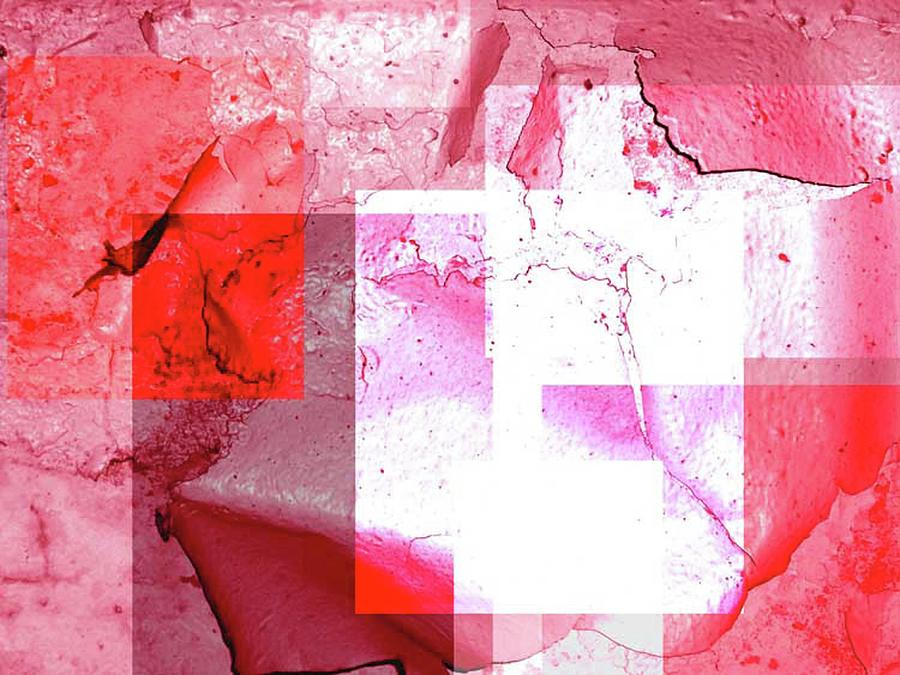 Abstract Photograph - Cracked Up by Alice Lipping