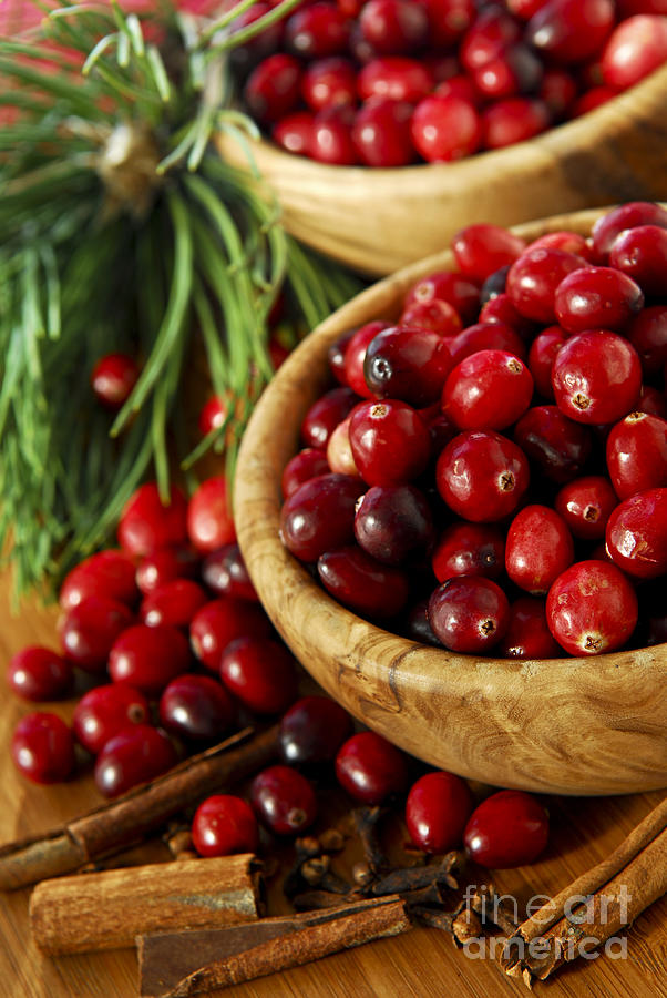 Cranberry Photograph - Cranberries In Bowls by Elena Elisseeva