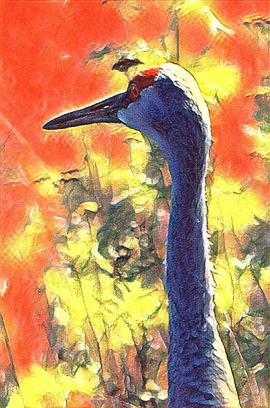 Crane View by Kimberly Woyak