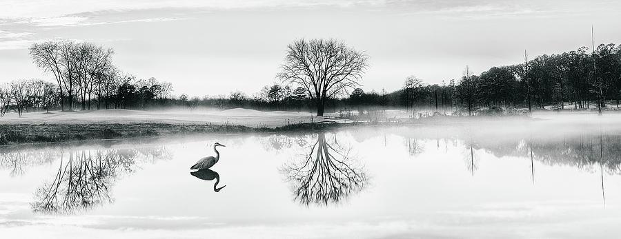 Landscape Photograph - Cranes world by Ahmed Shanab
