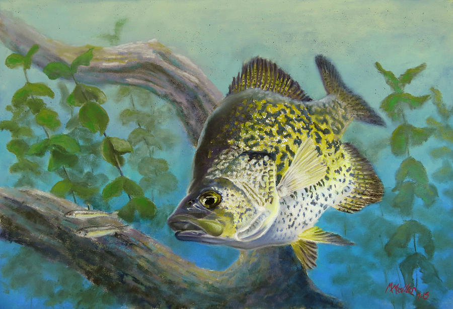 Crappies Twofer by Marcus Moller