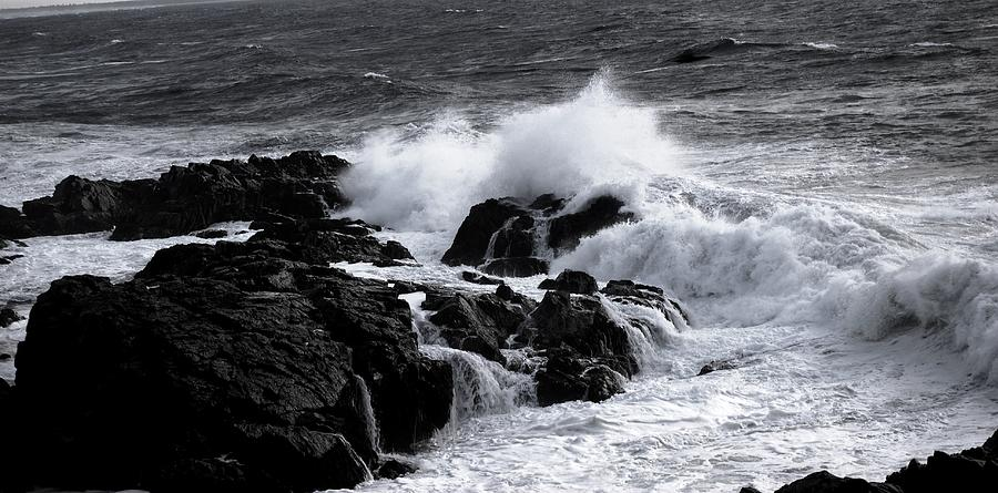 Maine Photograph - Crashing by Sarah Jean Sylvester