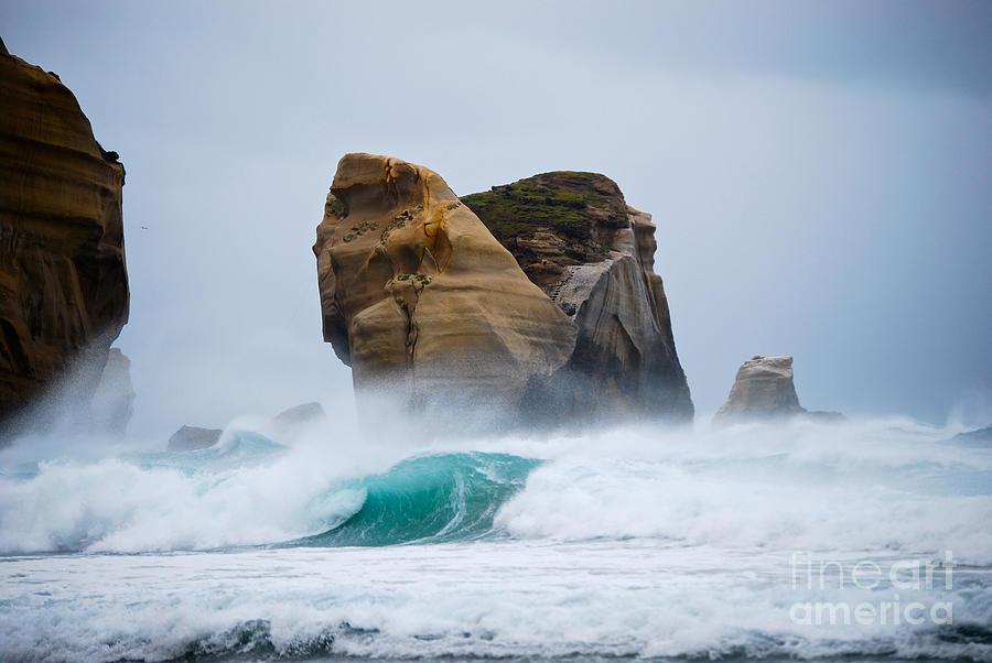 Flower Photograph - Crashing Wave by Cesar Marino