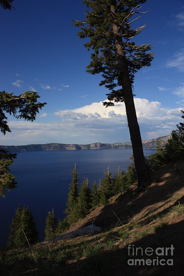 Landscape Photograph - Crater Lake 7 by Carol Groenen