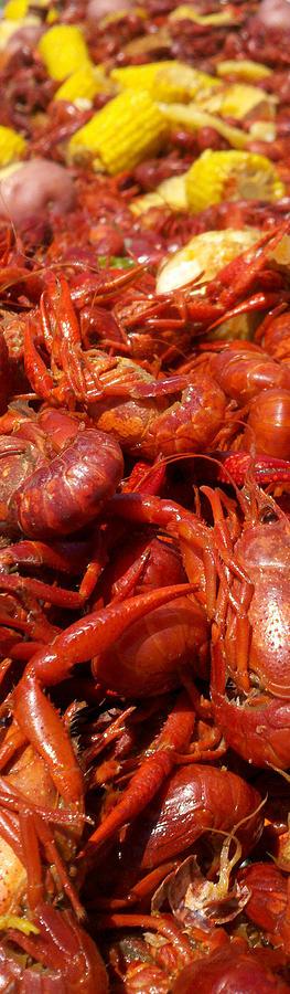 Crawfish Photograph - Crawfish Boil Bayou St John Nawlins by Sean Gautreaux