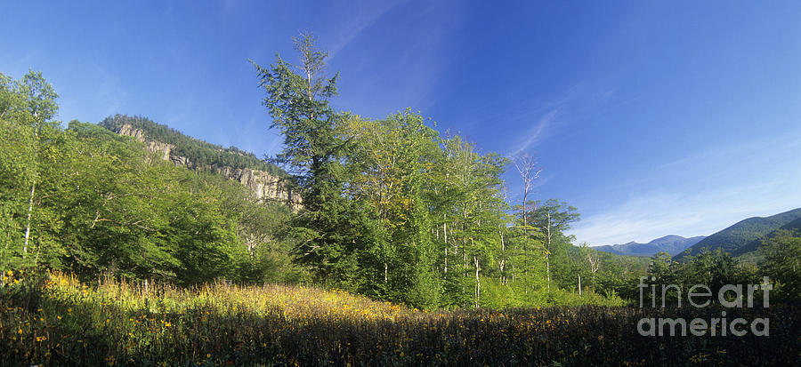 Crawford Notch Photograph - Crawford Notch State Park - Frankenstein Cliff White Mountains Nh Usa by Erin Paul Donovan