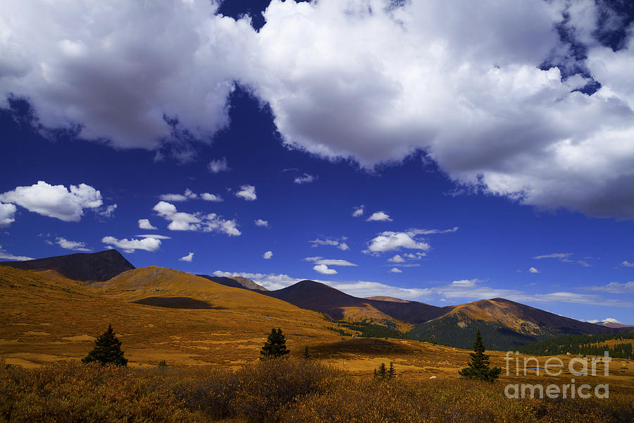 Clouds Photograph - Crazy Blue Sky by Barbara Schultheis