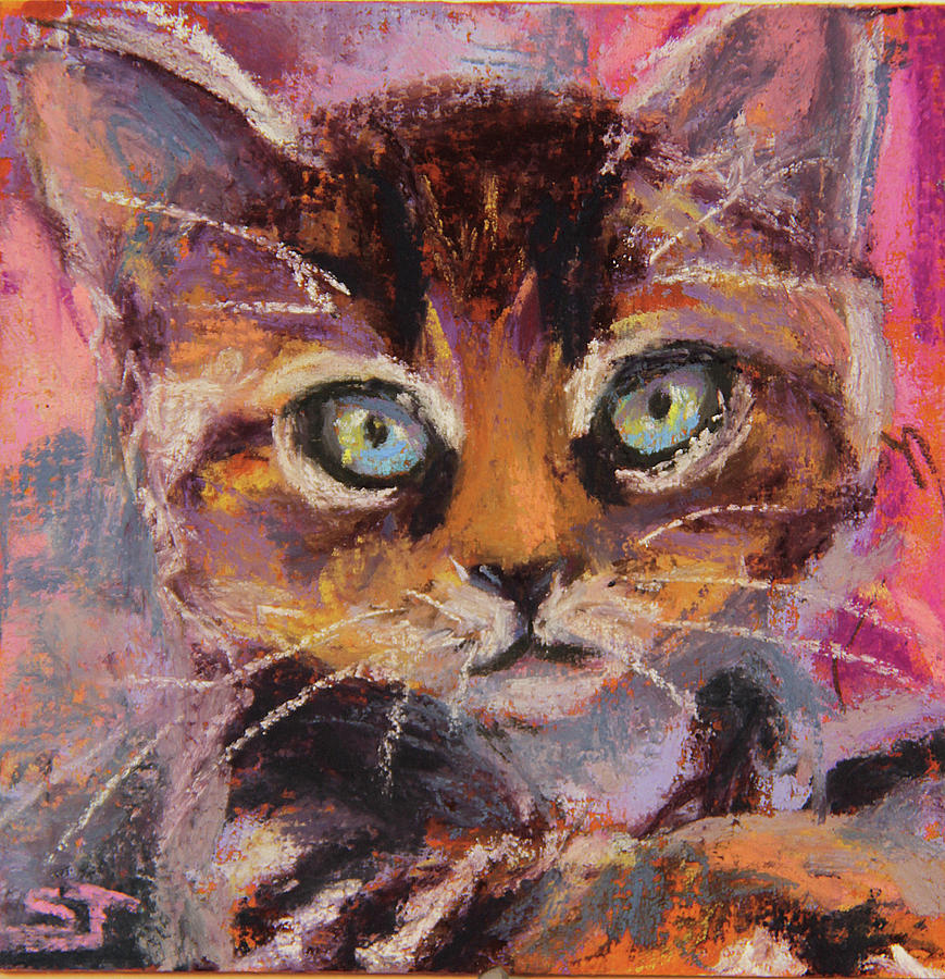 Cat Painting - Crazy Cat Tabby  by Susan Jenkins