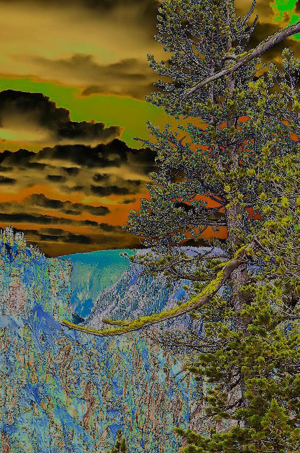 Creation 1 by Lisa Holland-Gillem