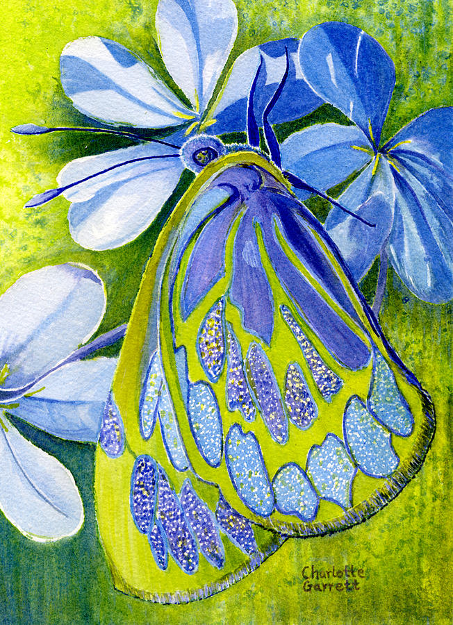 Creativity Butterfly by Charlotte Garrett