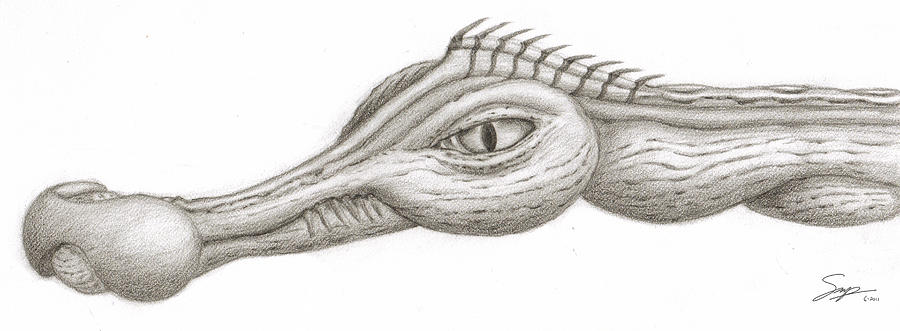 Sketch Drawing - Creature Eyes -3 by Steven Powers SMP