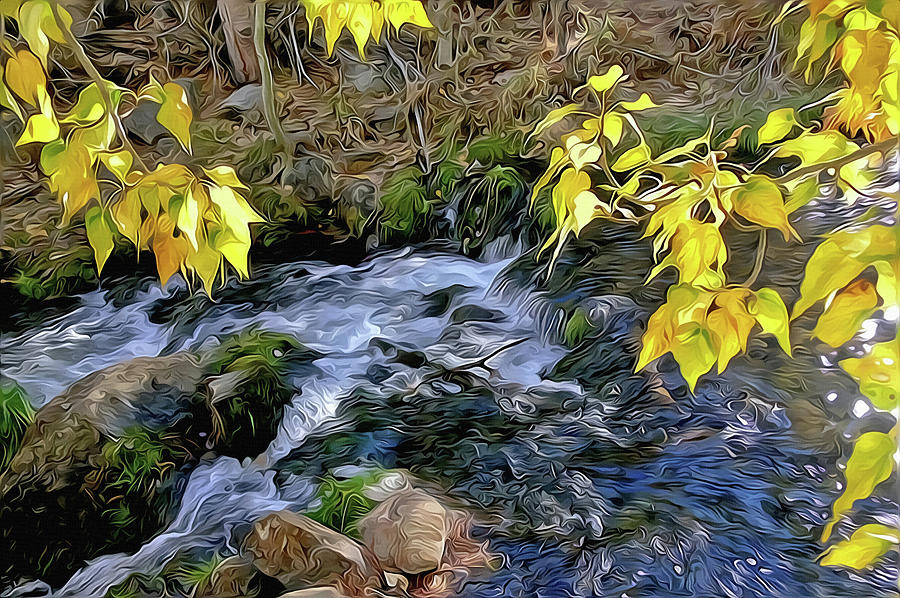 Creek and Aspen Leaves by Frank Lee Hawkins