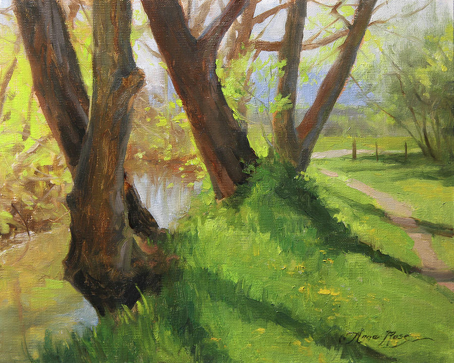 Trees Painting - Creekside Shadows by Anna Rose Bain