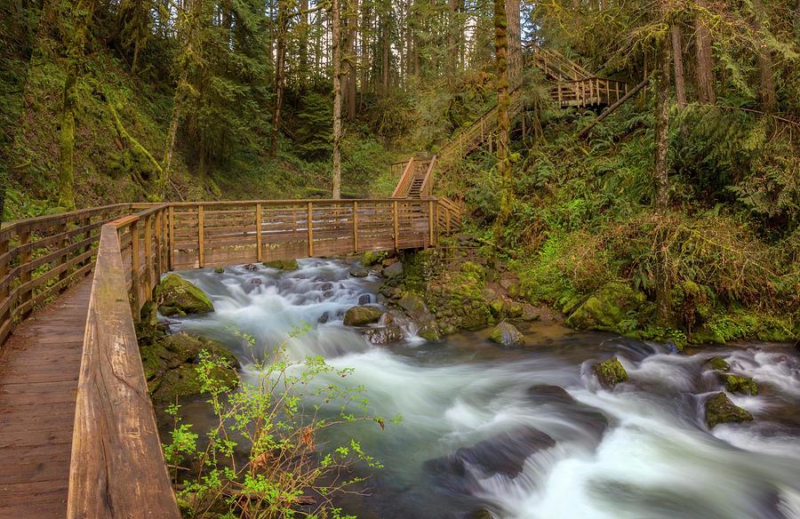 Creekside Walk by Jon Ares