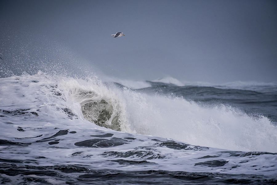 Coast Photograph - Crest Of A Wave by Robert Potts