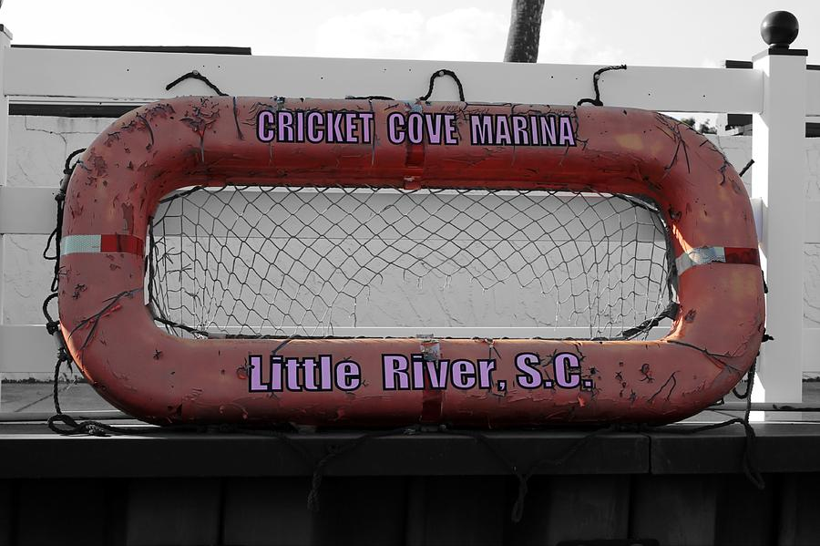 Cricket Cove Marina By Wendy Gertz